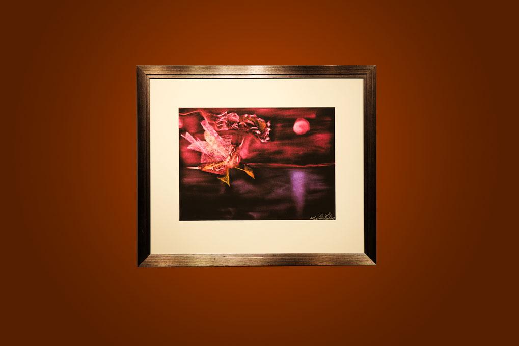 Pink dragon 67 x 57 cm